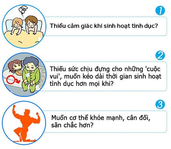 hammer-tang-cuong-sinh-luc-phai-manh
